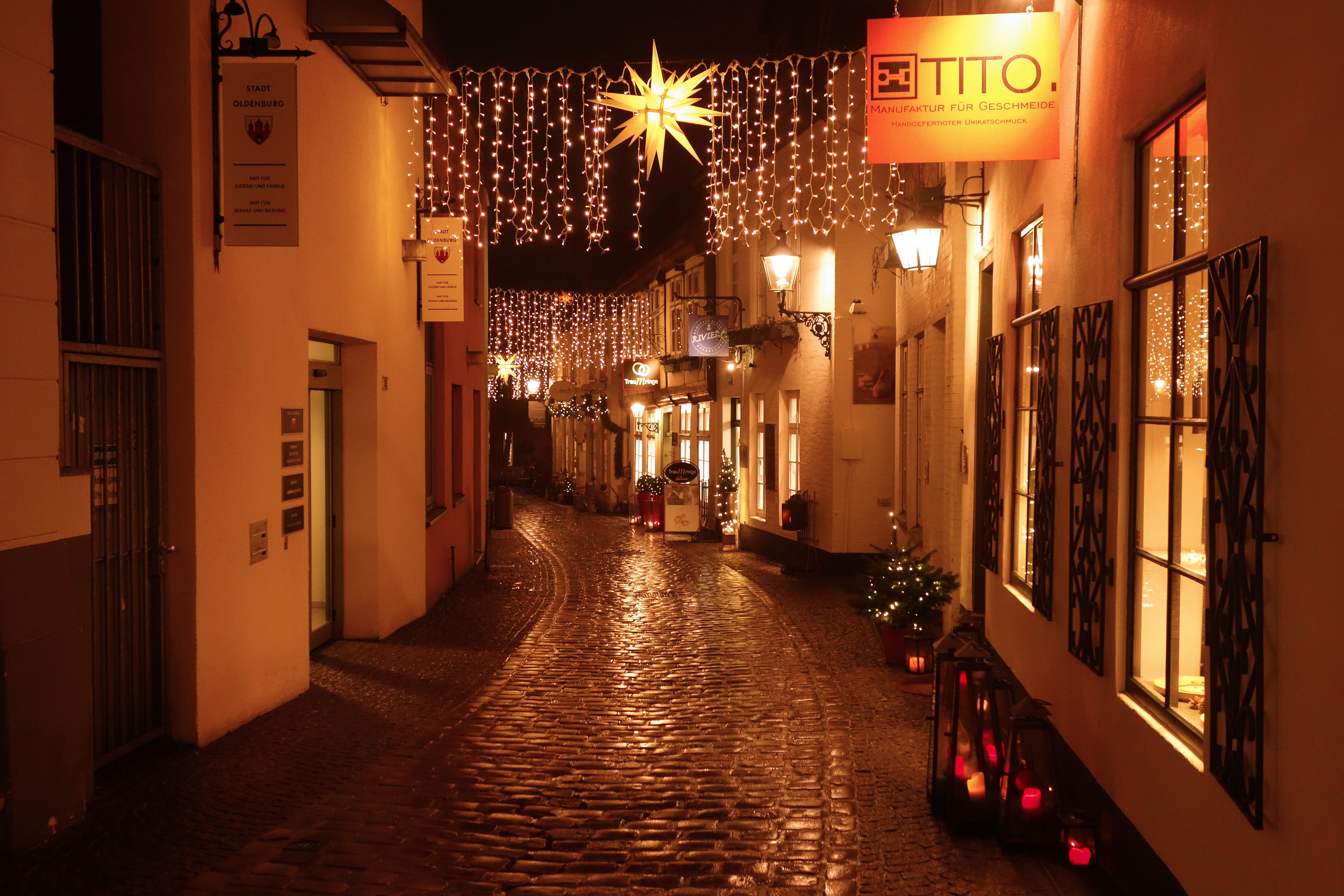 Weihnachtsbaum Drahtgestell.Dezember 2016 Licht Im Tierheim Und Ein Geklauter Weihnachtsbaum